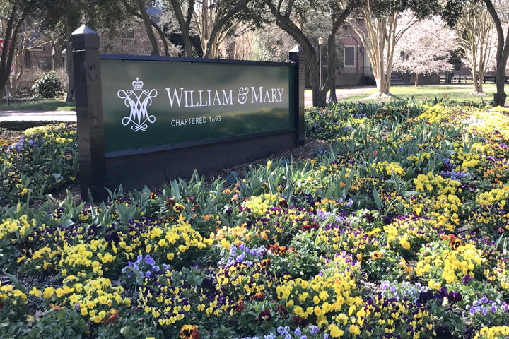 william and mary law review