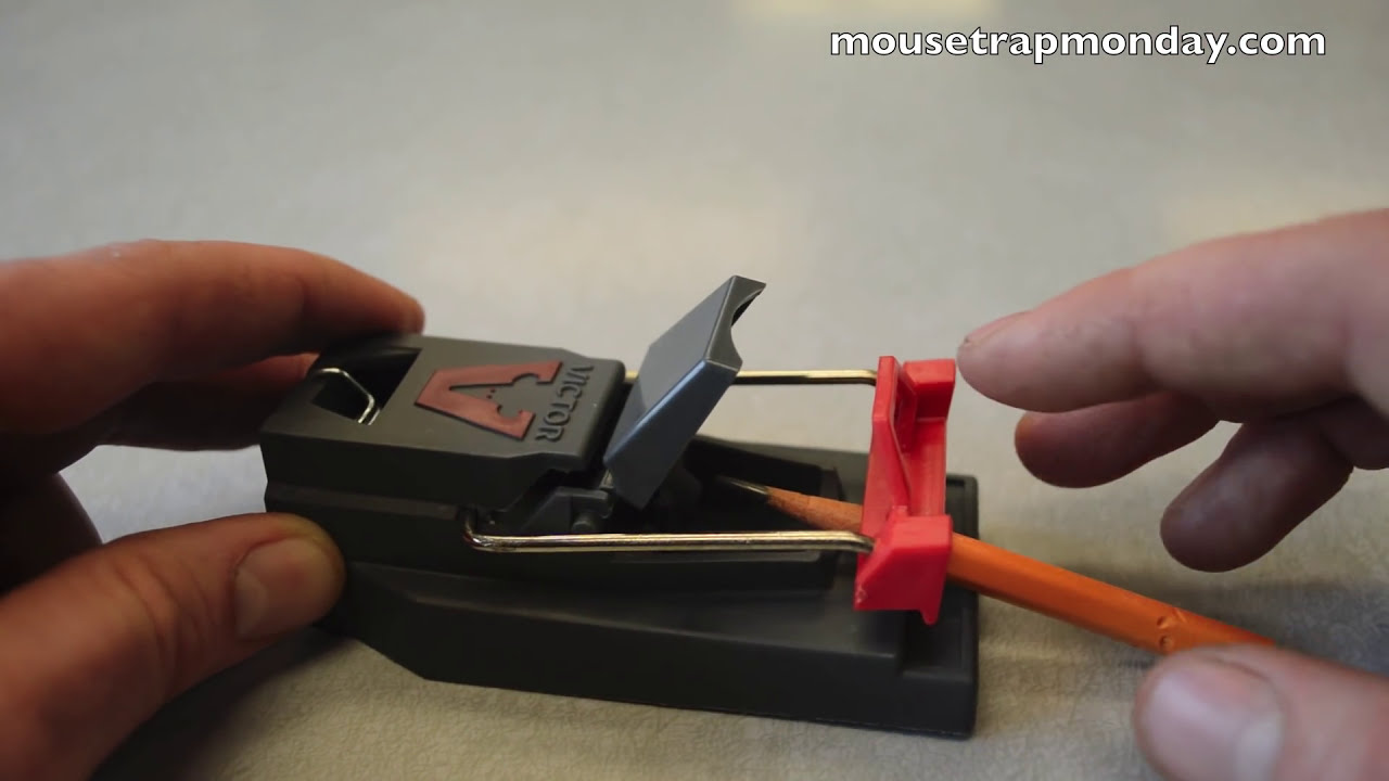 victor tri kill mouse trap review