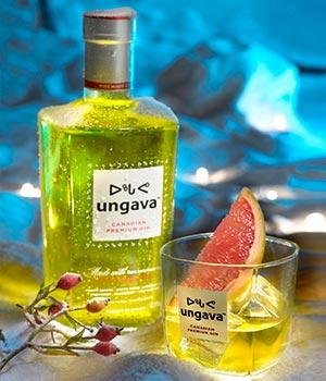ungava canadian premium gin review