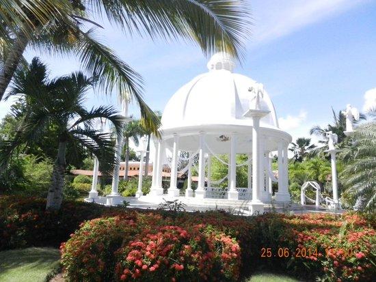 melia caribe tropical resort reviews