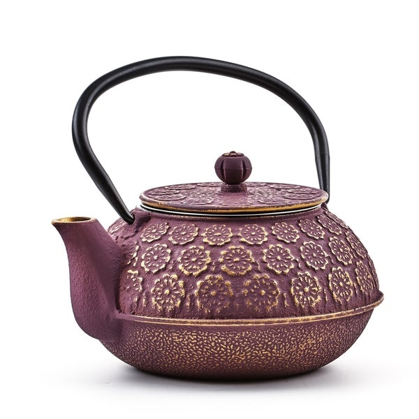 well equipped kitchen cast iron teapot reviews