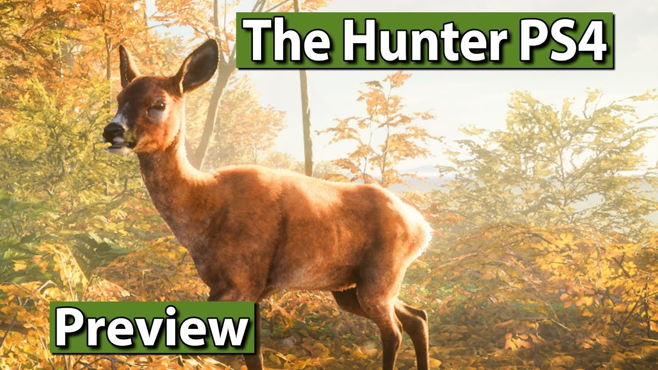 the hunter call of the wild review ps4