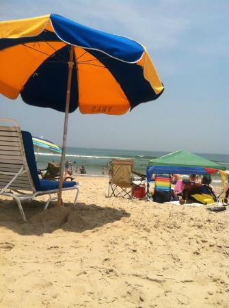 the capes hotel virginia beach reviews