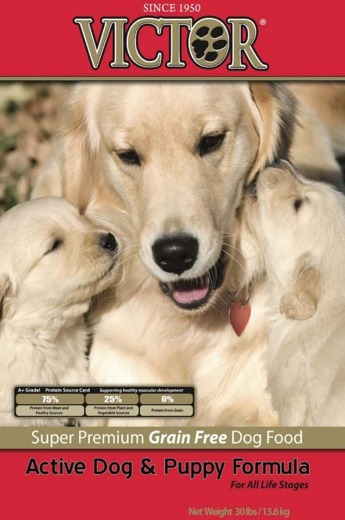 victor premium dog food reviews