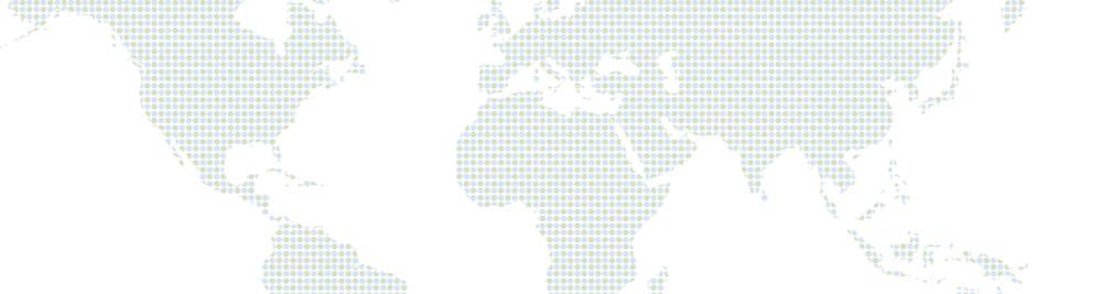 radius global market research reviews