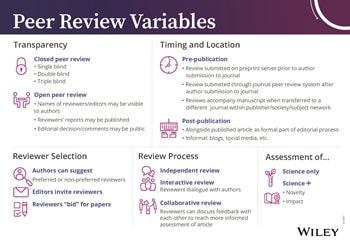 what does a reviewer do during peer review