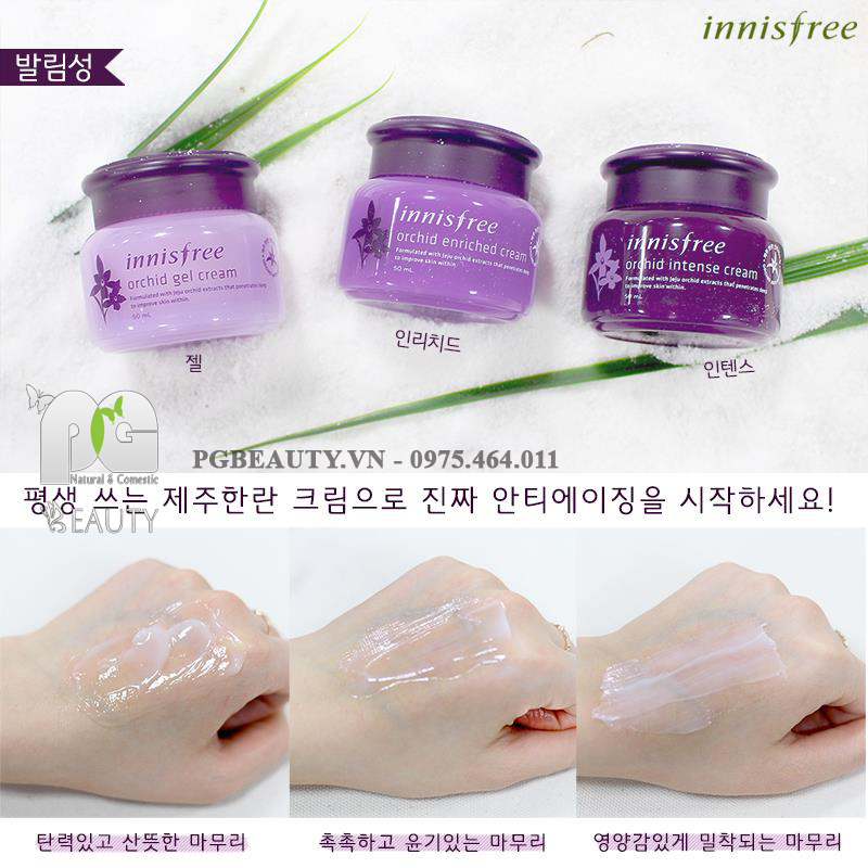 innisfree eye cream orchid review