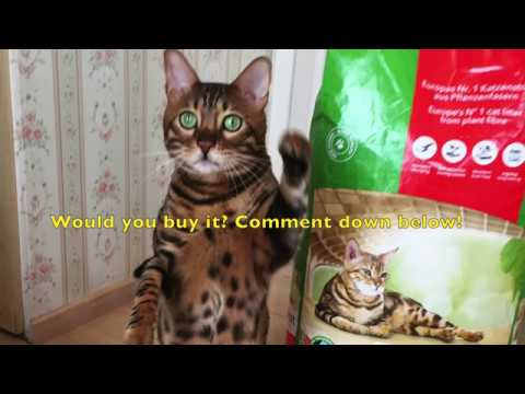 oko plus cat litter reviews