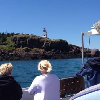 petit passage whale watch reviews