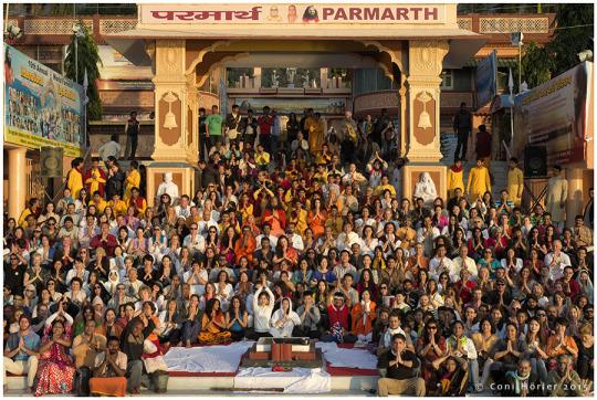 international yoga festival rishikesh reviews