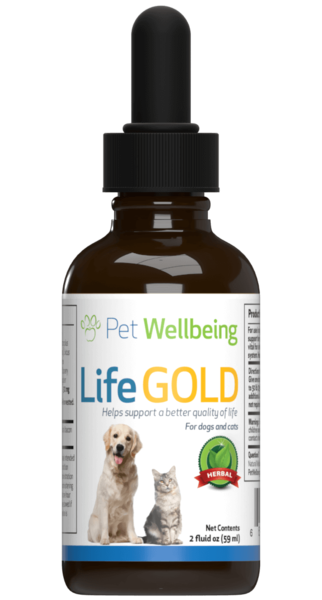 life gold cat cancer support reviews
