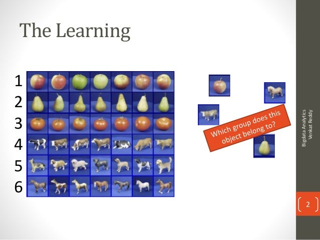 machine learning for dummies review