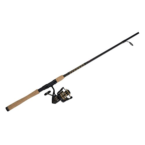 saltwater rod and reel combos reviews