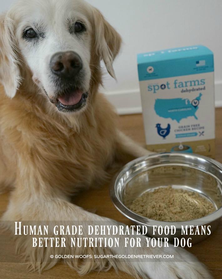spot farms dog food reviews