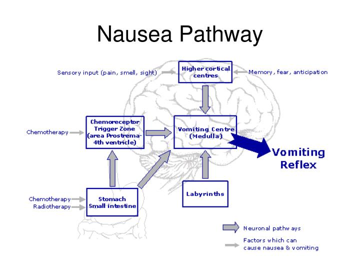 treating nausea and vomiting in palliative care a review