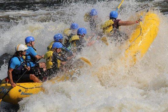 white water rafting ontario reviews